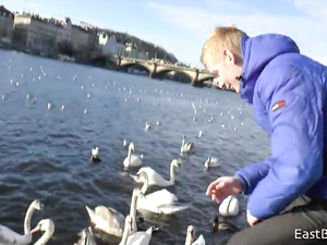 Beautiful white swans hotly excite naughty blonde twink guy